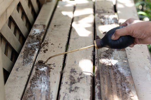 building pest inspection report secrets